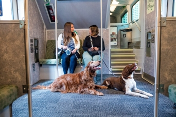 After public demand, dogs may find a permanent home inside Go Trains.