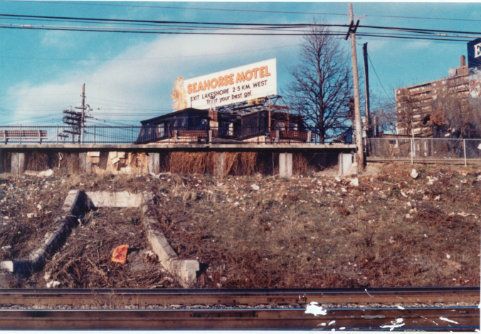 As seen in the 1980s, the section of hillside was once filthy and filled with trash and debris. The backdrop is a billboard promoting the old Seahorse Motel.