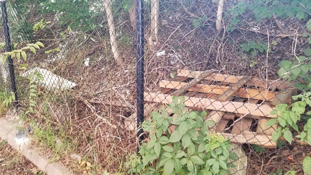 Wooden pallets sit on top of one another, on the other side a wire fence.