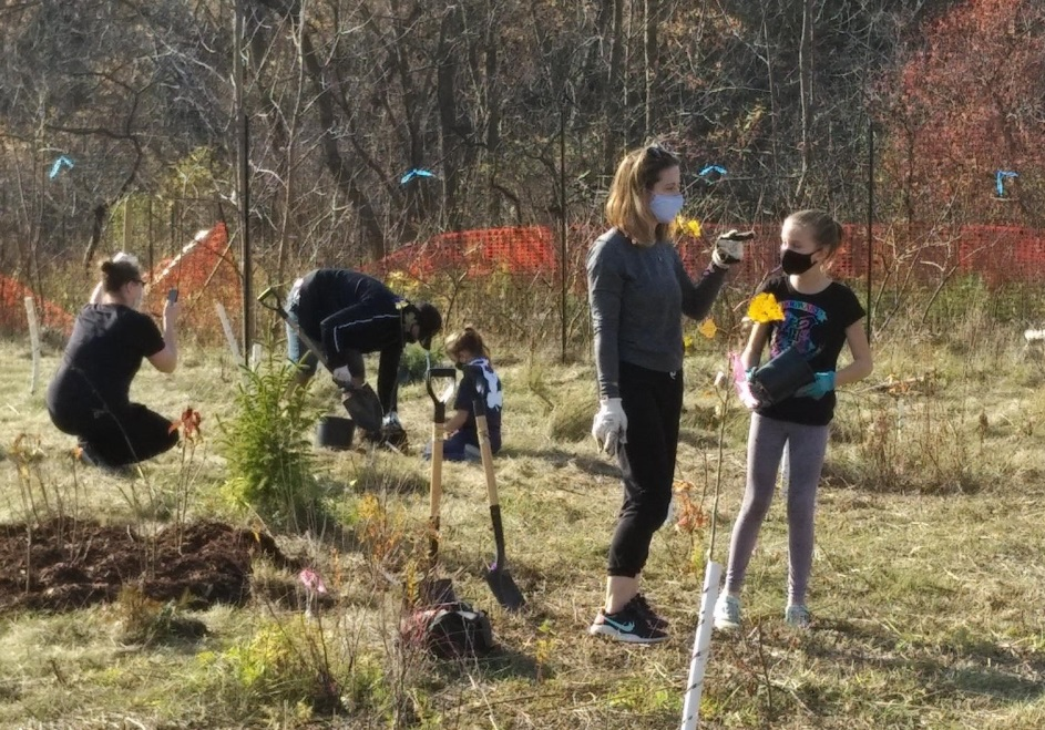 Local Girl Guides and their families help with tree planting efforts in Etobicoke