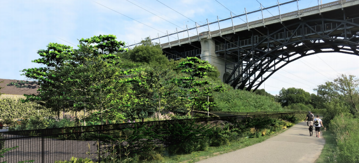 Photo of the Don Valley trail looking up at the viaduct